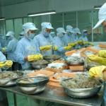Doanh nghiệp Việt Nam xuất khẩu vào Hoa Kỳ: Lượng rất nhiều nhưng chất không thấy đâu