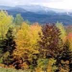 Thông tin tiểu bang Vermont   Hoa Kỳ